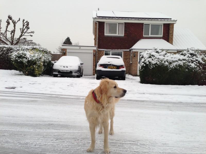 Elsdon snow 2013-01